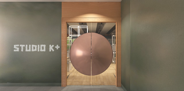 The 3D perspective drawing of the door